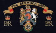 Bermuda Regiment Ice Bucket - bermuda-regiment