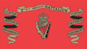 Royal Irish Regiment Ice Bucket - ulster-defence-regiment-2nd-battalion