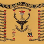 Royal Regiment of Scotland 4th Ice Bucket - seaforth-highlanders