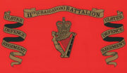 Royal Irish Regiment Ice Bucket - ulster-defence-regiment-11th-battalion