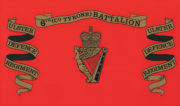 Royal Irish Regiment Ice Bucket - ulster-defence-regiment-6th-battalion