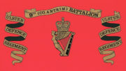 Royal Irish Regiment Ice Bucket - ulster-defence-regiment-9th-battalion